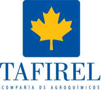 logo tafirel